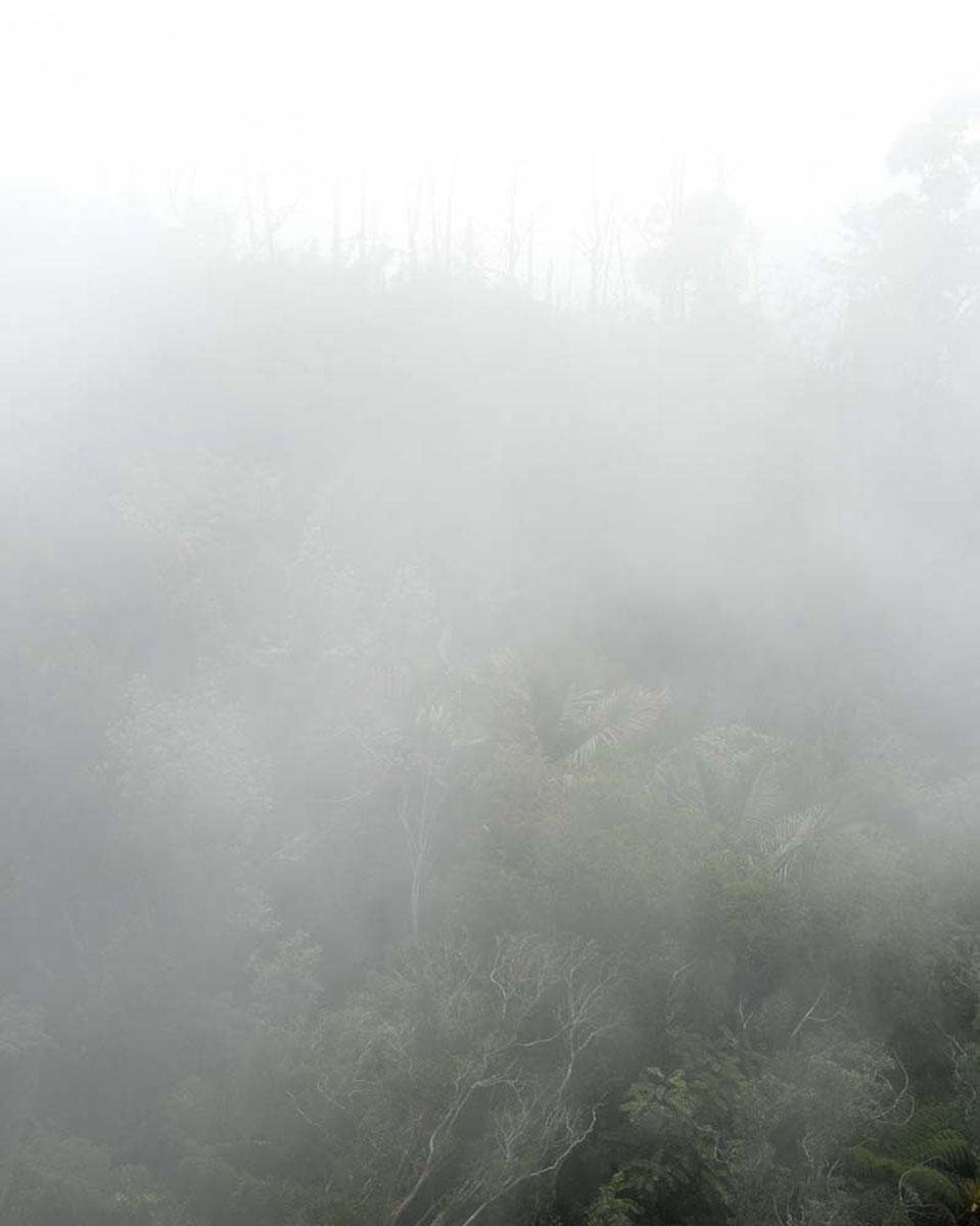 Gran Piedra marronnage site, Bacanao National Park.